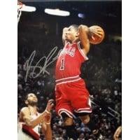 Signed Rose Derrick Chicago Bulls 11x14 Photo autographed