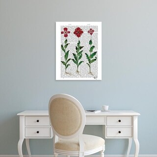 Easy Art Prints Fab Funky's 'Italian Carnation 1' Premium Canvas Art