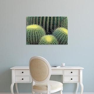 Easy Art Prints Adam Jones's 'Pattern In Cactus' Premium Canvas Art