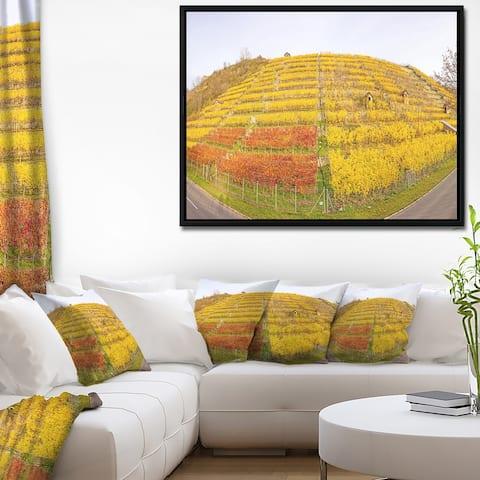 Designart 'Vineyard Panorama in Autumn' Landscape Framed Canvas Art Print