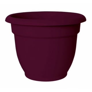 """Bloem AP1229 Ariana Planter with Self-Watering Disc Insert, Passion Fruit, 12"""""""