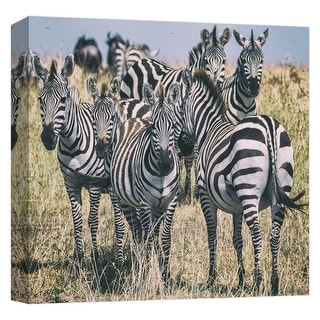 "PTM Images 9-124670  PTM Canvas Collection 12"" x 12"" - ""Zebra Stare"" Giclee Zebras Art Print on Canvas"