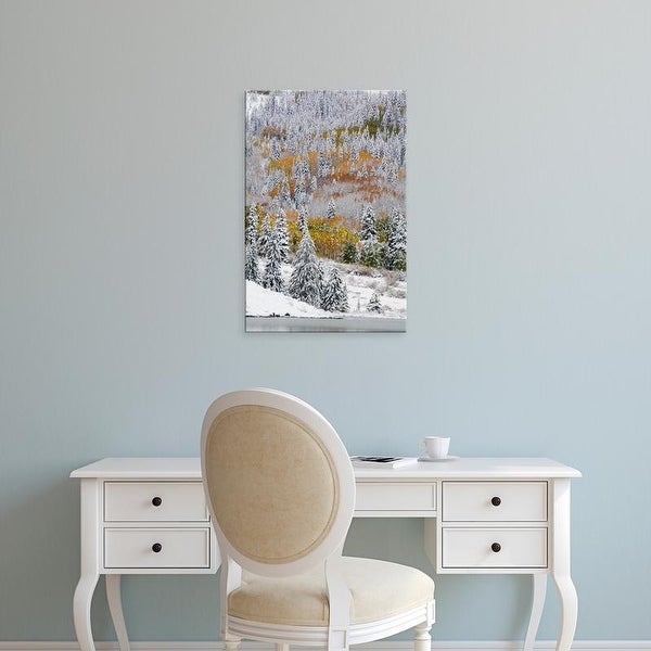 Easy Art Prints Terry Eggers's 'Snow Covered Aspens And Firs' Premium Canvas Art