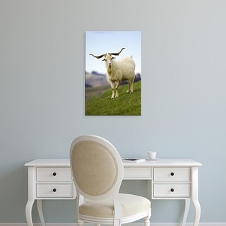 Easy Art Prints David Wall's 'Goats' Premium Canvas Art