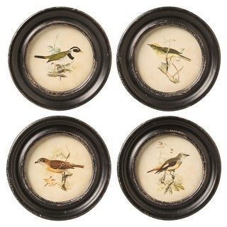 Creative Co-op Framed Bird Prints Set - Vintage Look Retro Bird Wall Art Pictures in Distressed Round Frames - 9.5 in.