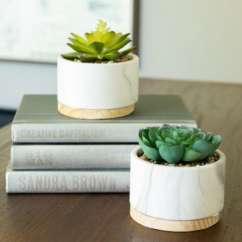SET OF 2 Artificial Plant Succulent in Marble Finish Ceramic Pot w Wood Base - ONE-SIZE