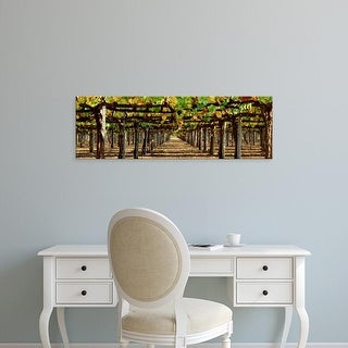 Easy Art Prints Panoramic Images's 'Vineyard CA' Premium Canvas Art