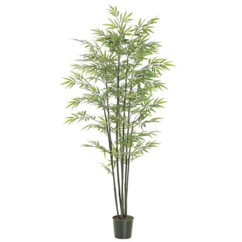 Set of 2 Artificial Potted Black Bamboo Trees 6'