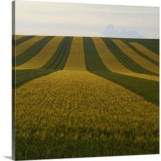 """Striped field"" Canvas Wall Art"