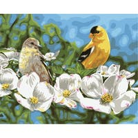 "Paint By Number Kit 16""X20""-Gold & White"