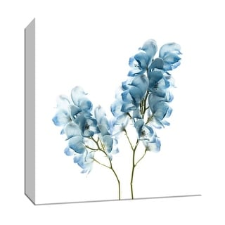 "PTM Images 9-147542  PTM Canvas Collection 12"" x 12"" - ""Gorgeous Blue II"" Giclee Flowers Art Print on Canvas"