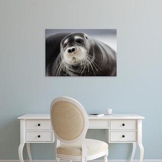 Easy Art Prints Paul Souders's 'Bearded Seal' Premium Canvas Art