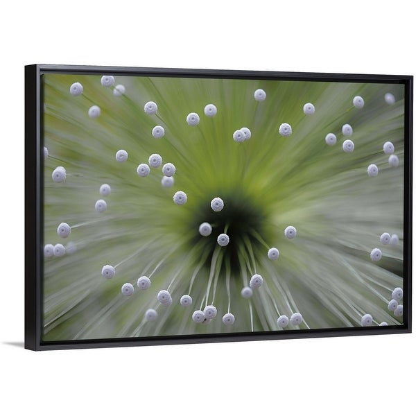 """Green And White II"" Black Float Frame Canvas Art"
