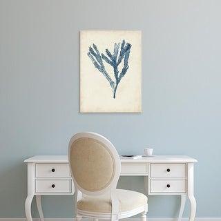 Easy Art Prints Naomi McCavitt's 'Seaweed Specimens I' Premium Canvas Art