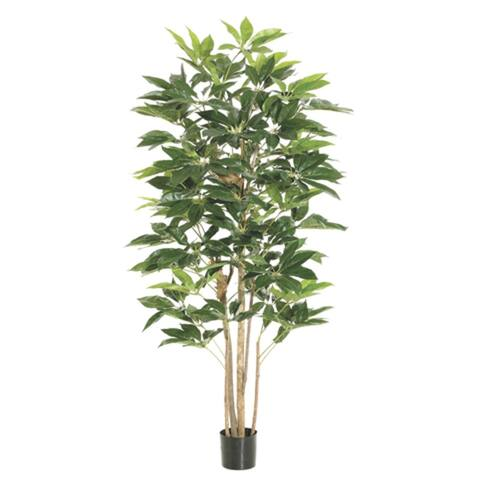 Pack of 2 Potted Artificial Schefflera Trees 6' - 6-to-7-feet