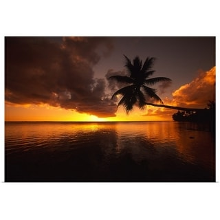 """Palm tree bent far out over the ocean, silhouetted by a yellow sunset sky"" Poster Print"