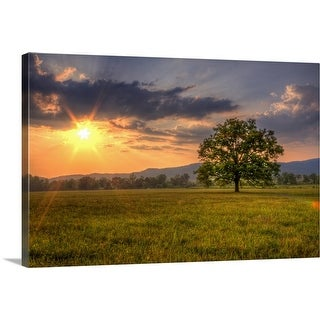 """""""Sunset behind lone tree in field, Great Smoky Mountains National Park."""" Canvas Wall Art"""