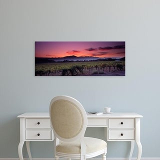 Easy Art Prints Panoramic Images's 'Vineyard At Sunset, Napa Valley, California, USA' Premium Canvas Art