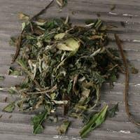 Pai Mu Tan White Tea