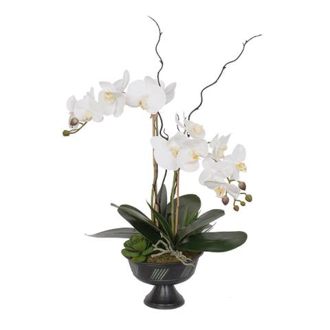 Real Touch White Phalaenopsis Orchids, Leaves, Succulents in Urn - 14W x 11D x 22H