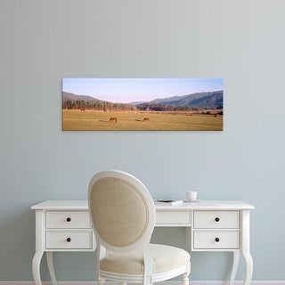 Easy Art Prints Panoramic Image 'Tennessee, Cades Cove, Great Smoky Mountains National Park, Horses grazing' Canvas Art