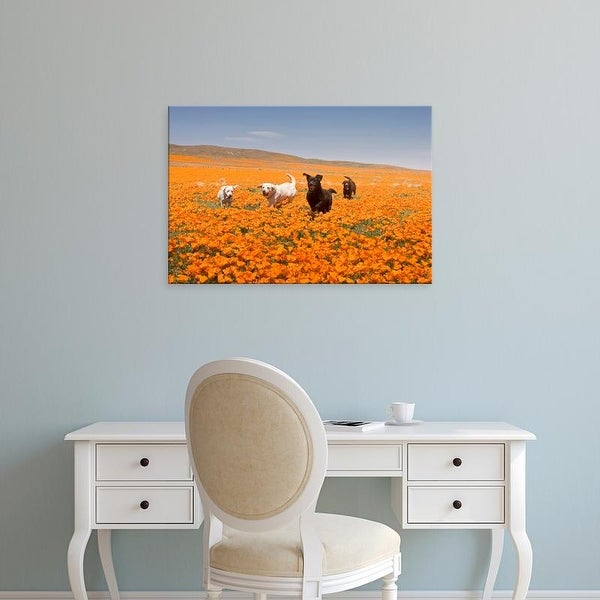 Easy Art Prints Zandria Muench Beraldo's 'Four Labrador Retrievers In Antelope Valley' Premium Canvas Art