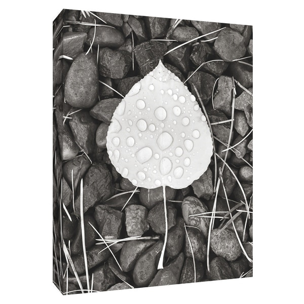 """PTM Images 9-154695 PTM Canvas Collection 10"""" x 8"""" - """"Aspen Leaf II"""" Giclee Stones & Pebbles Art Print on Canvas"""
