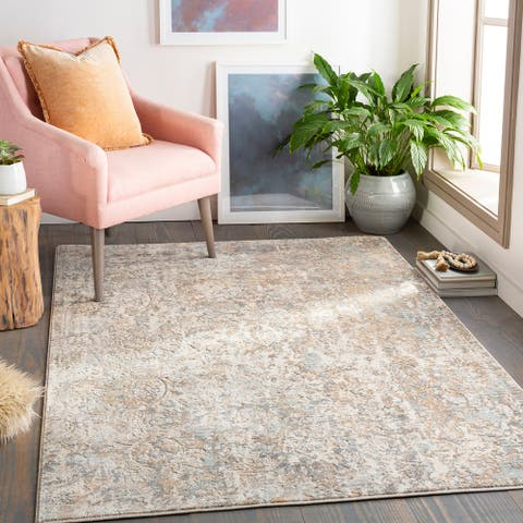 Masyn Distressed Abstract Damask Area Rug
