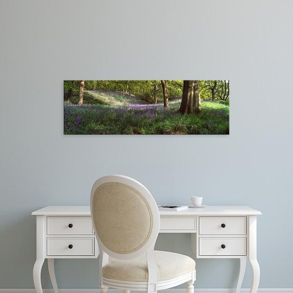 Easy Art Prints Panoramic Images's 'Bluebells In A Forest, Newton Wood, Texas, USA' Premium Canvas Art