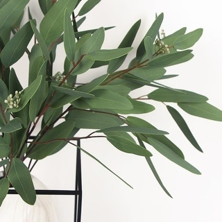 "FloralGoods Artificial Eucalyptus Long Oval Leaf Stem 32"" Tall"