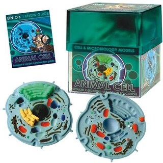 Tedco Toys 32371-ANI Bio Signs Animal Cell Model