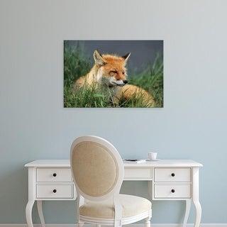 Easy Art Prints Gerry Reynolds's 'Red Fox' Premium Canvas Art