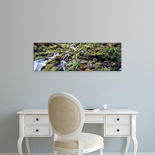 Easy Art Prints Panoramic Image 'Waterfall in forest, Olympic National Park, Olympic Peninsula, Washington ' Canvas Art