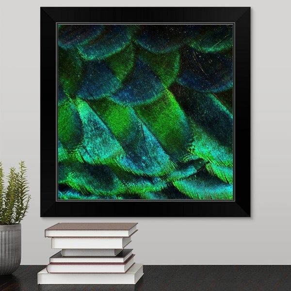 """""""Close up of iridescent peacock feathers at zoo."""" Black Framed Print"""