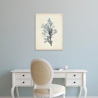 Easy Art Prints Naomi McCavitt's 'Seaweed Specimens IV' Premium Canvas Art