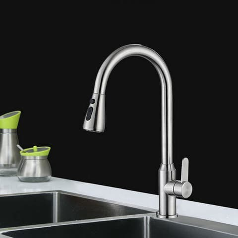 Single Handle Kitchen Sink Faucet Pull Out Sprayer