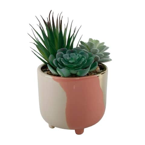 """Succulent Garden IN 4.8"""" 3-TONE FOOTED CERAMIC POT,GREY - ONE-SIZE"""