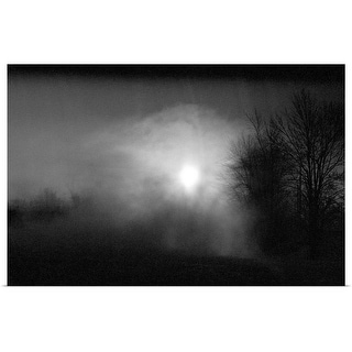 """Night sky with silhouetted trees"" Poster Print"