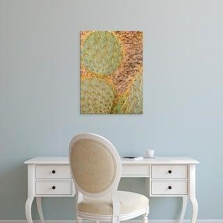 Easy Art Prints Scott T. Smith's 'Pancake Cactus' Premium Canvas Art