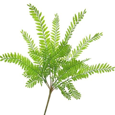 """Set of 2 Mimosa Fern Leaf Greenery Foliage Bush 17in - 17"""" L x 14"""" W x 11"""" DP"""