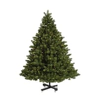 9.5' Pre-Lit Grand Teton Artificial Christmas Tree - Warm Clear LED Lights