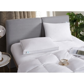 Martha Stewart White Feather and Down Pillows (Set of 2)