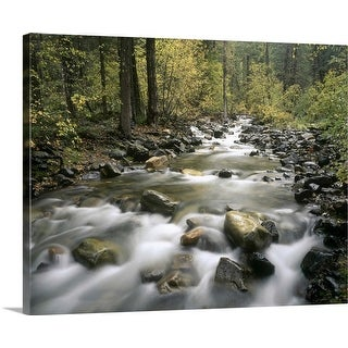 """Robinson creek, Washington state"" Canvas Wall Art"