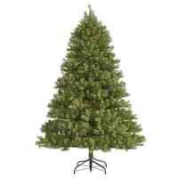 7.5' Pre-Lit Belvedere Spruce Artificial Christmas Tree - Clear Lights - green