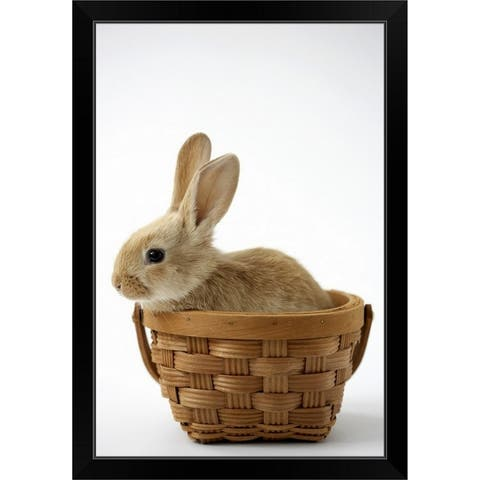 """Bunny in basket"" Black Framed Print"