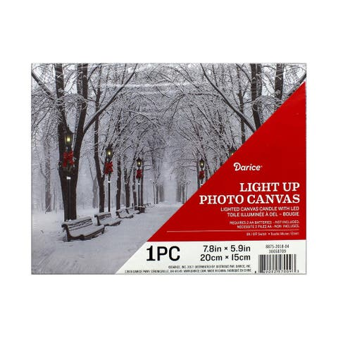 "Darice Light Up Canvas LED 7.8x5.9"" Winter Park"