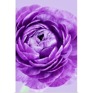 """Purple flower"" Poster Print"