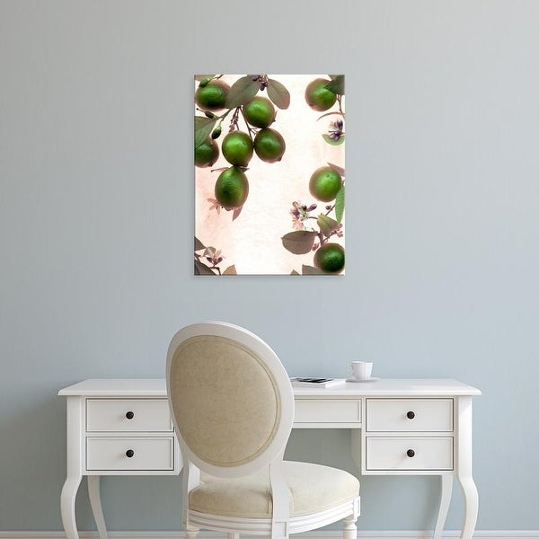 Easy Art Prints Alan Blaustein's 'Limes #1' Premium Canvas Art
