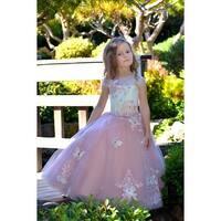 Little Girls Ivory Pink Butterfly Applique Train Flamingo Flower Girl Dress
