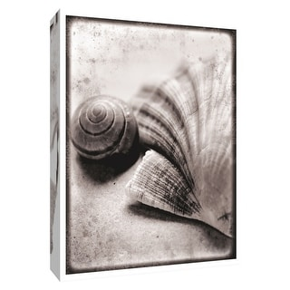"""PTM Images 9-154831  PTM Canvas Collection 10"""" x 8"""" - """"Ocean Treasures"""" Giclee Shells Art Print on Canvas"""